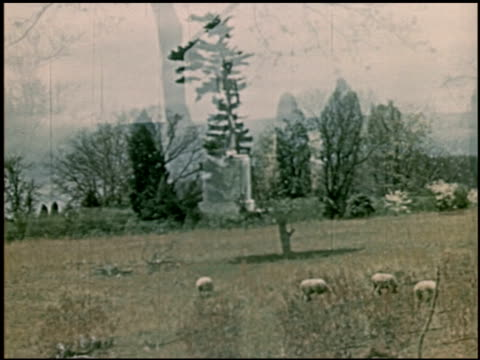 jefferson and monroe - 2 of 8 - トーマス ジェファーソン点の映像素材/bロール