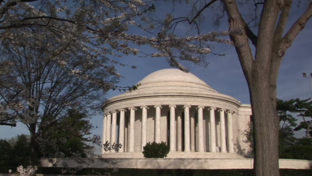 vidéos et rushes de ms, jefferson memorial, cherry blossom in foreground, washington dc, washington, usa - jefferson memorial