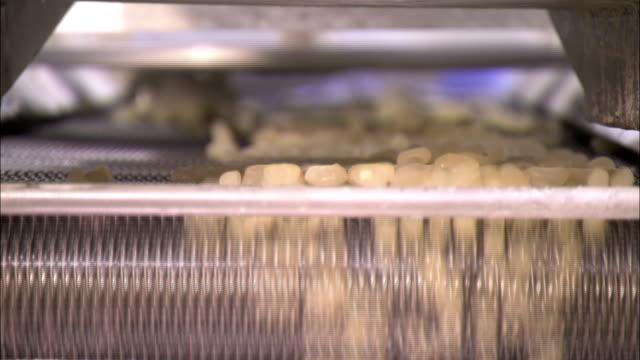 vídeos de stock e filmes b-roll de jelly beans fall off a conveyor that vibrates. - coinfeitos