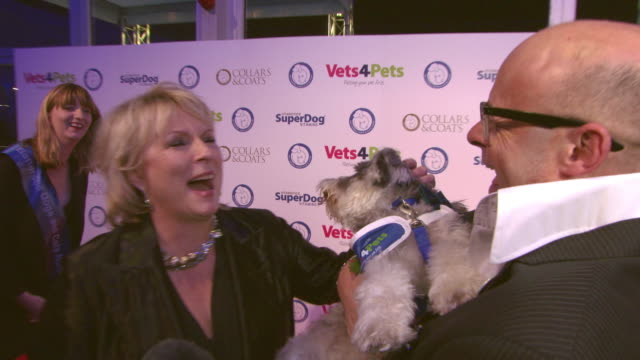 jennifer saunders interviewed at collars coats gala ball at battersea evolution on november 02 2017 in london england - jennifer saunders stock videos & royalty-free footage
