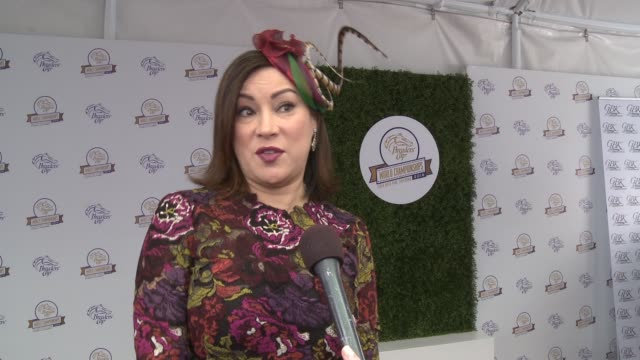 interview jennifer tilly at the 2014 breeders' cup world championships in los angeles ca on - jennifer tilly stock videos & royalty-free footage