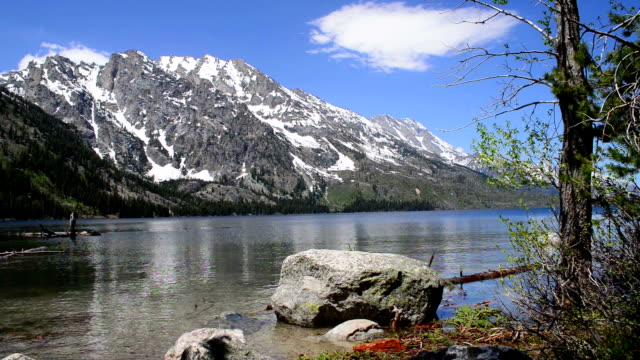 jenny lake, grand teton national park - grand teton national park stock videos & royalty-free footage