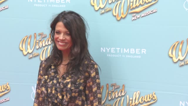 jenny powell at the wind in the willows press night / vip gala at london palladium on june 29 2017 in london england - jenny powell stock videos & royalty-free footage