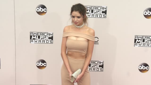 jess bauer at 2016 american music awards at microsoft theater on november 20 2016 in los angeles california - 2016 american music awards stock videos and b-roll footage