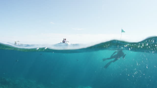 jet ski approaches scuba divers - snorkelling stock videos & royalty-free footage