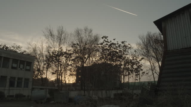Jet stream across the sunset sky