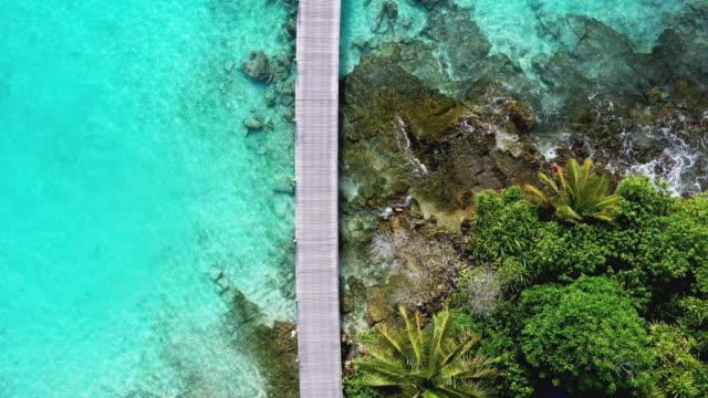 bootsanleger mit palmen und ozean, malediven - anlegestelle stock-videos und b-roll-filmmaterial