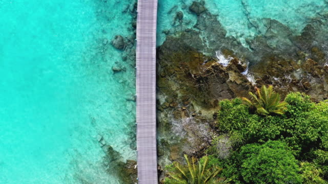 jetty with palm trees and ocean, maldives - jetty stock videos & royalty-free footage