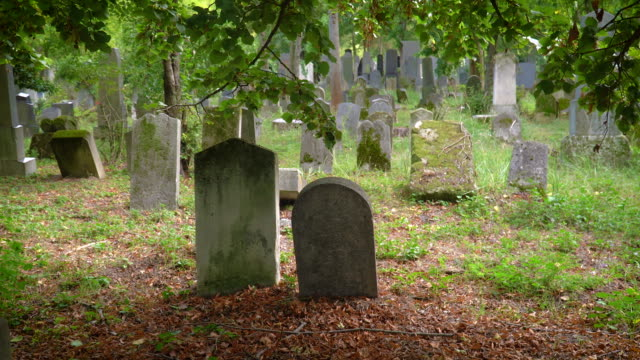jewish cemetery graves - gravestone stock videos & royalty-free footage