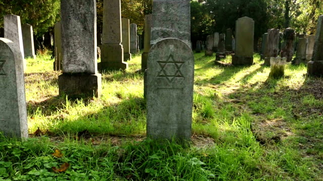 jewish cemetery - star of david stock videos and b-roll footage