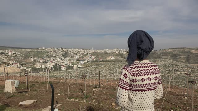 jewish settler observes the palestinian village of mukhmas from psagot winery located on a hill near kokhav ya'akov an israeli settlement adjacent to... - only women stock videos & royalty-free footage