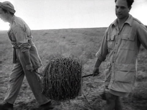 jewish settlers carry barbed wire fencing at a kibbutz - 1948 stock videos & royalty-free footage