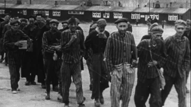 jews liberated from consentration camps - concentration camp stock videos & royalty-free footage