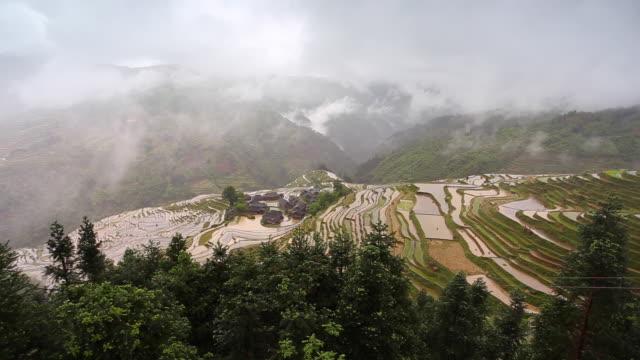 jiaban terraced fields in,congjiang,guizhou,china - add list stock videos & royalty-free footage