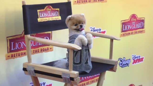 Jiffpom at the Premiere Of Disney Channel's The Lion Guard Return Of The Roar at Walt Disney Studios in Burbank at Celebrity Sightings in Burbank on...