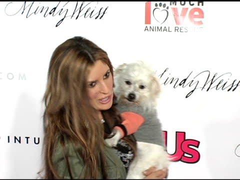 jillian barberie at the 1st annual us weekly hollywood holiday shopping party at smashbox studios in culver city, california on november 11, 2004. - us weekly stock videos & royalty-free footage