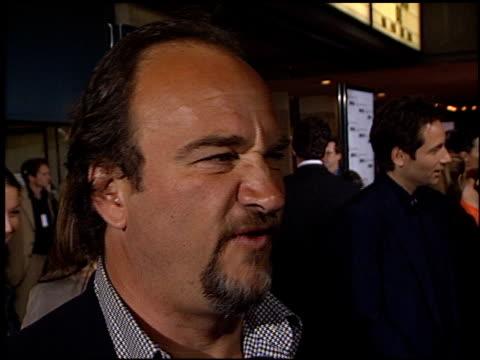 vídeos y material grabado en eventos de stock de jim belushi at the 'return to me' premiere on april 3, 2000. - jim belushi