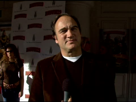 vídeos y material grabado en eventos de stock de jim belushi on the movie, his character and future projects at the 'hoodwinked' benefit premiere for the stuart house at the mann festival theater in... - jim belushi