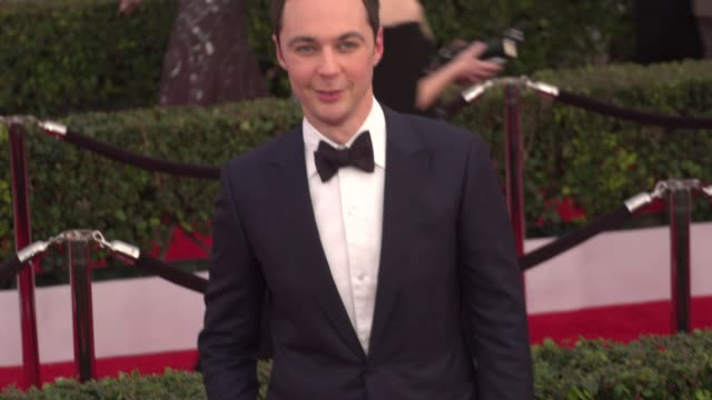 jim parsons at 22nd annual screen actors guild awards arrivals in los angeles ca - jim parsons stock videos and b-roll footage