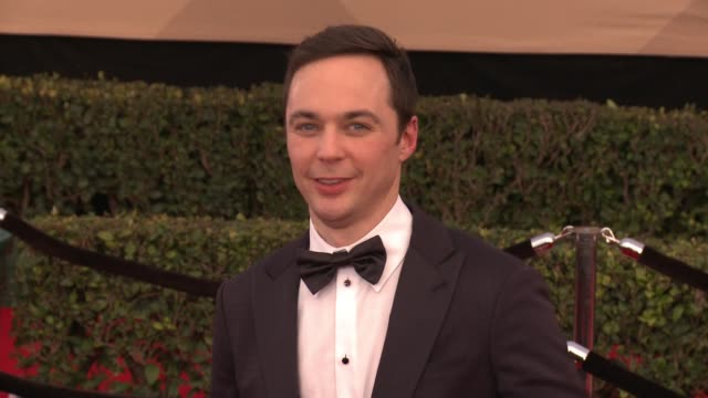 jim parsons at 23rd annual screen actors guild awards arrivals in los angeles ca - jim parsons stock videos and b-roll footage