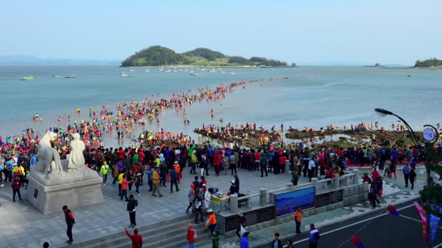 jindo miracle sea route to geumhodo island / jindo-gun, jeollanam-do, south korea - jeollanam do stock videos & royalty-free footage