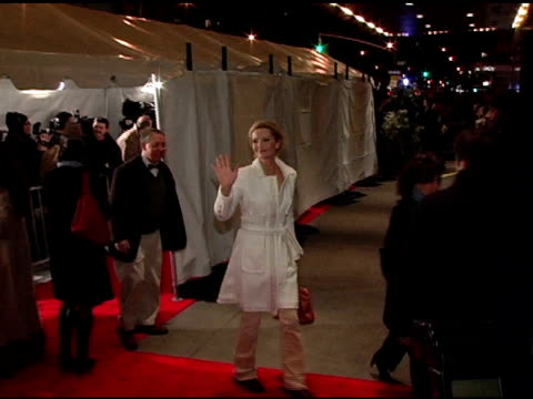 joan allen at the 'brokeback mountain' new york premiere at lowes lincoln square in new york new york on december 6 2005 - joan allen stock videos and b-roll footage
