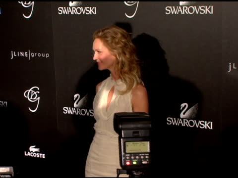 joan allen at the costume designer's awards at the beverly hilton in beverly hills california on february 25 2006 - joan allen stock videos and b-roll footage