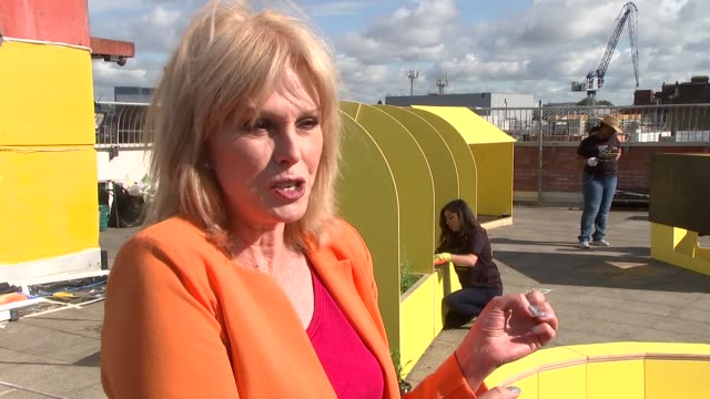 joanna lumley helps launch 'spark something good' campaign england london ext roof turned into adventure playground and garden joanna lumley... - joanna lumley stock videos & royalty-free footage