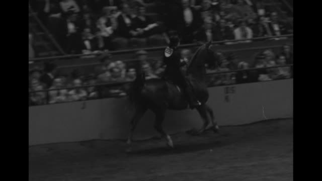 joanne link, wearing formal equestrian attire, rides her horse around a circular dirt arena; spectators look on; judge walks past / note: exact year... - incomplete stock videos & royalty-free footage