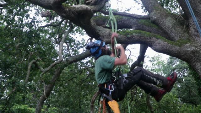 a job of strength - lumberjack stock videos & royalty-free footage