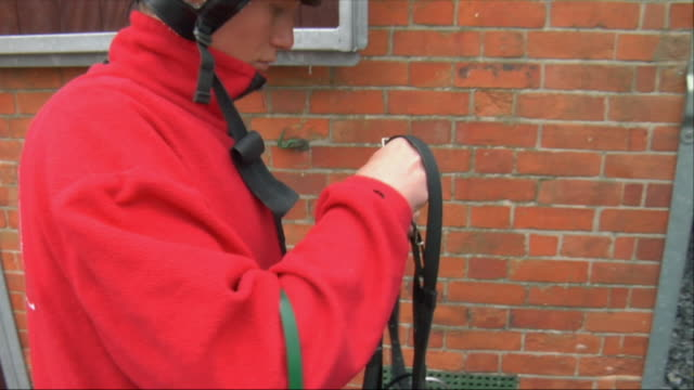 cu zo ms jockey adjusting harness outside stable / newbury, england, uk - see other clips from this shoot 1045 stock videos and b-roll footage