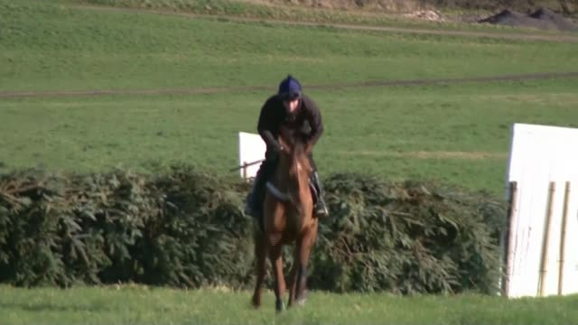 jockey danny cook prepares for grand national horse racing jockey danny cook prepares for grand national england north yorkshire malton ext various... - steeplechase stock videos and b-roll footage