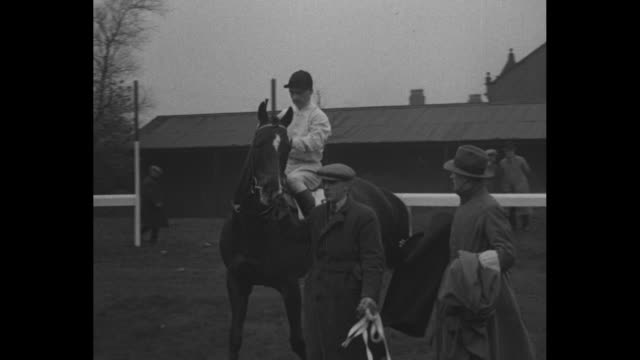 vídeos de stock e filmes b-roll de jockey dudley williams talking to trainer ivor anthony / williams mounts horse kellsboro' jack / man leading horse with williams to starting place... - número 8