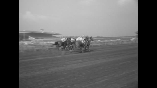 jockey eddie arcaro parades racehorse nashua on arlington park racecourse with other horse alongside / low angle of race starter on platform pushing... - starting gate stock videos and b-roll footage