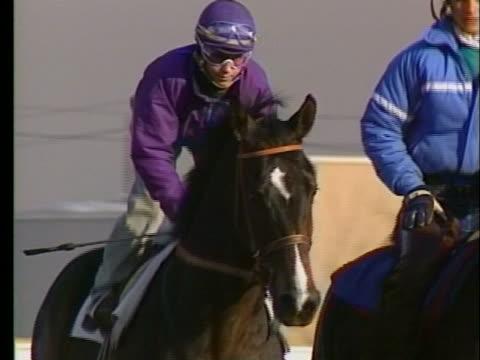 jockey julie krone rides her horse along the race track. - jockey stock videos & royalty-free footage