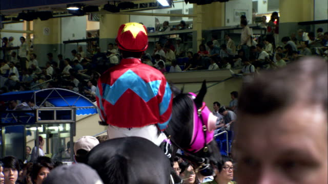 A jockey on a race horse trots into the arena. Available in HD.
