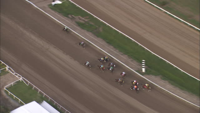 jockeys break out of the starting gate racing around a track. - racehorse stock videos & royalty-free footage