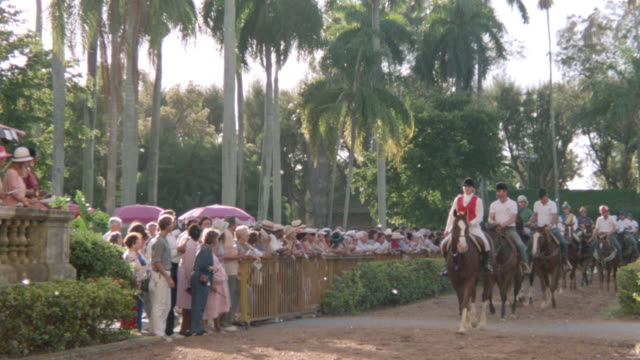 vídeos y material grabado en eventos de stock de jockeys ride their horses in single file before a race. - fan palm tree