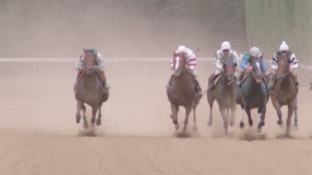 jockeys whip racing thoroughbreds on the homestretch of a racetrack. - racehorse stock videos & royalty-free footage