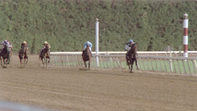 jockeys whip their horses as they gallop down the homestretch on a racetrack. - galoppieren stock-videos und b-roll-filmmaterial