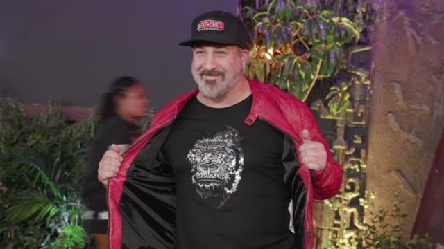vídeos de stock e filmes b-roll de joey fatone at jumanji: welcome to the jungle premiere in los angeles, ca 12/11/17 - joey fatone