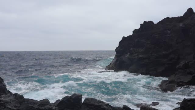 jogasaki coast - liyao xie stock videos & royalty-free footage