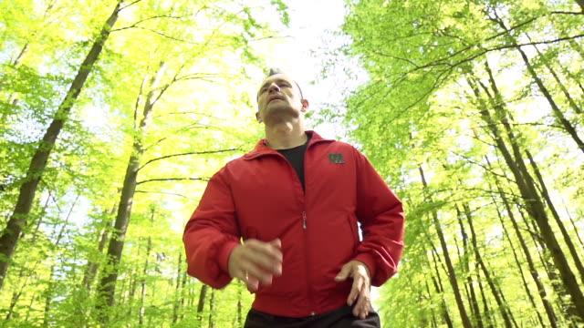 HD SUPER SLOW-MOTION: Jogger dans la forêt.