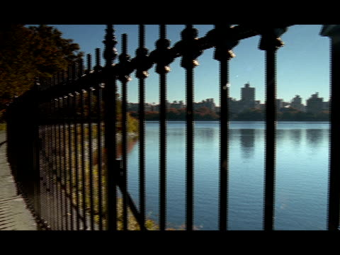 jogger runs along the shoreline of a central park lake at golden hour. - golden hour stock videos & royalty-free footage