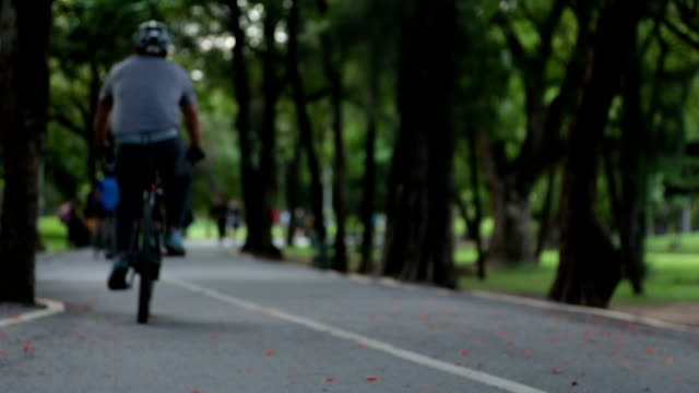 joggers, bicyclists on bike path road in Central Park