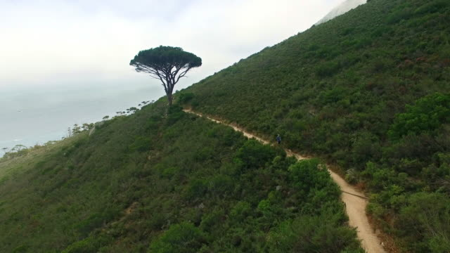 jogging along the mountain - lion's head mountain stock videos and b-roll footage