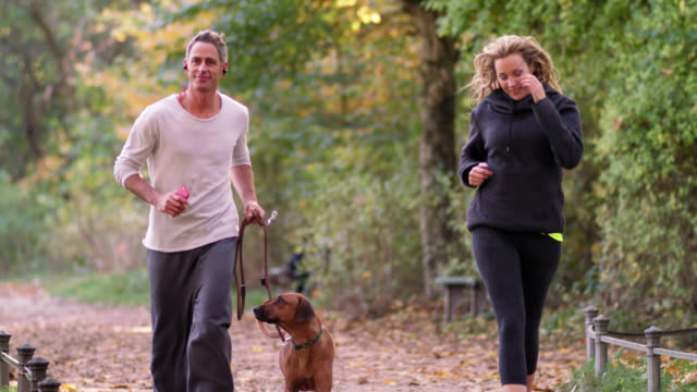 jogging couple with dog in a park on a fall day