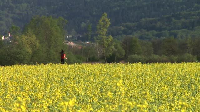 hd: jogging in der natur - joggerin stock-videos und b-roll-filmmaterial