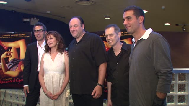 john turturro, susan sarandon, james gandolfini, steve buscemi, and bobby cannavale at the 'romance & cigarettes' premiere at clearview chelsea west... - steve buscemi stock videos & royalty-free footage