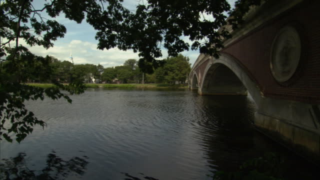 ms john w. weeks bridge pedestrian bridge over charles river at harvard university, leafy tree branches in foreground / cambridge, massachusetts, usa - river charles stock videos & royalty-free footage